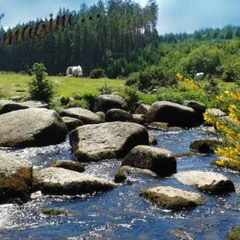 Imagine Dartmoor 2