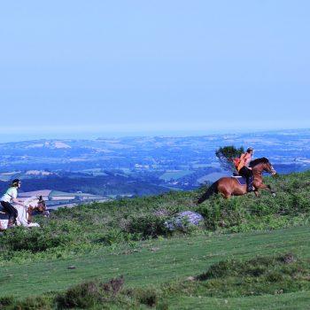 horse-riding-928884_1280